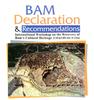 Bam Declaration